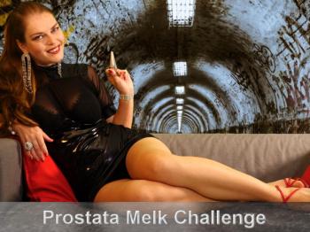 Prostata-Melk-Challenge