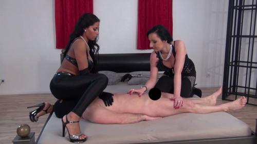 Lady Luciana - Teasing and Sniffing